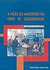Capa do livro A Visão do Ameríndio na Obra de Sousândrade, Cláudio Cuccagna