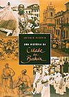 Capa do livro Uma História da Cidade da Bahia, Antonio Risério